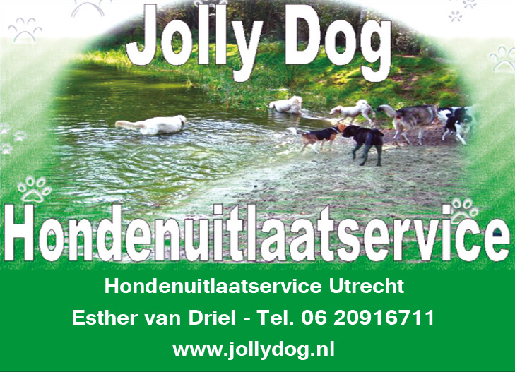 hondenuitlaatservice jolly dog logo