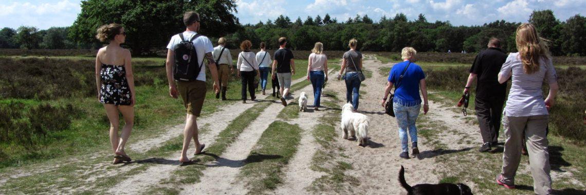 Hondenuitlaatservice Jolly Dog, Utrecht, Feestwandeling 1 jarig bestaan